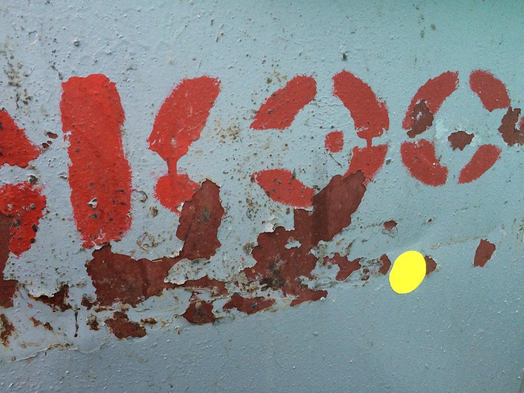 IMG-1922,large.1418288536